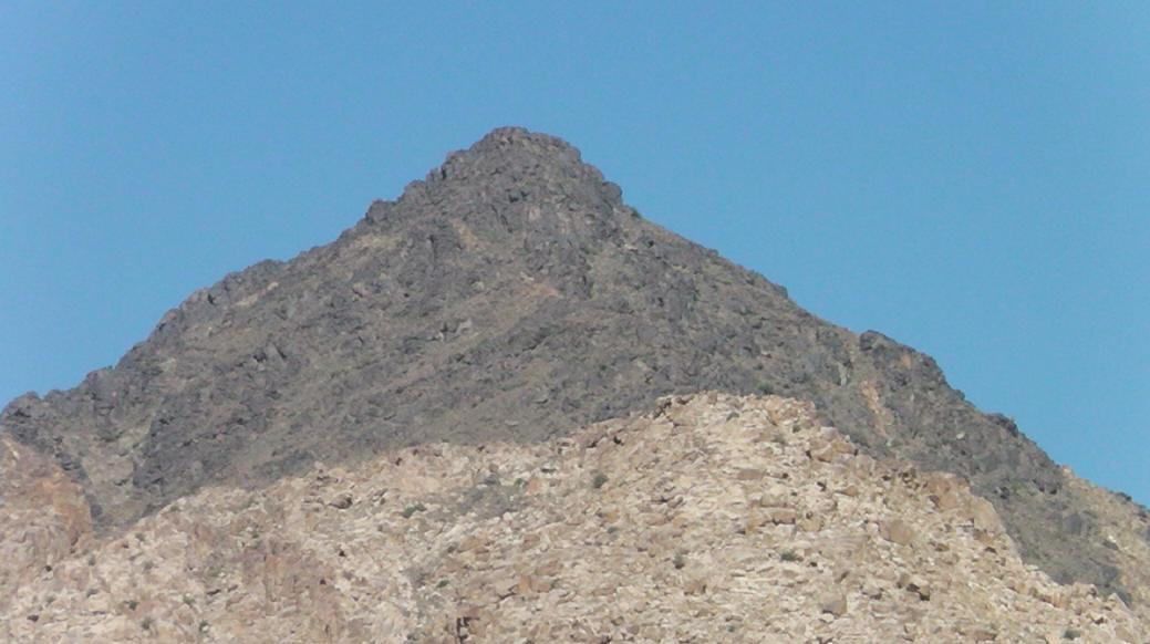 Mt  Sinai Found